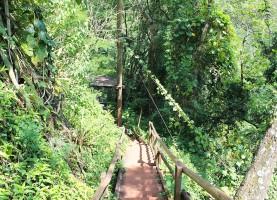 trilha-cachoeira-saltao